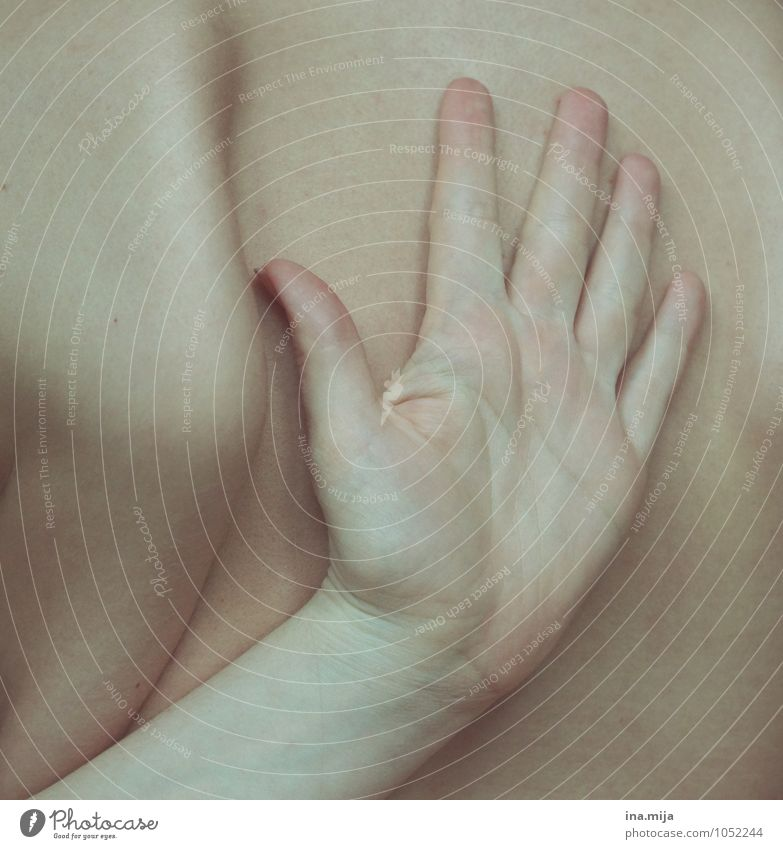 Handrücken Haut Mensch Rücken Finger 1 sportlich außergewöhnlich nah Selbstbeherrschung Bewegung Körperpflege Schulter Körperteile Schmerz Rückenschmerzen