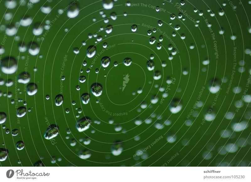 Perlengestöber Wassertropfen hydrophob nass Regen grün Fensterscheibe Pflanze Schatten Makroaufnahme
