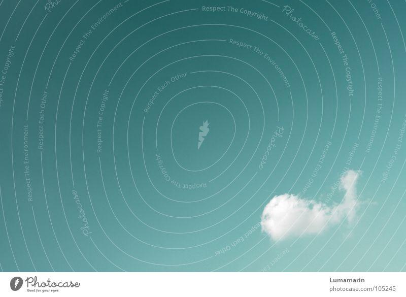 Meerestraum Himmel weiß Ferien & Urlaub & Reisen ruhig Wolken kalt Erholung träumen See Luft Zufriedenheit fliegen frisch Fisch Luftverkehr