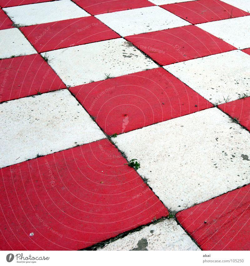 Schach! schwarz Schachbrett kariert Macht weiß rot leer dreckig Schauinsland Konzentration Spielen Sportveranstaltung Konkurrenz König herrscher Dame Läufer