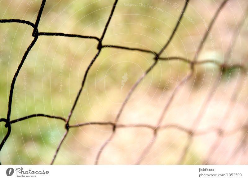 Zaun Stahl Rost kalt Grenze Begrenzung begrenzen blockieren schließen Maschendrahtzaun Drahtzaun Farbfoto Gedeckte Farben Außenaufnahme Nahaufnahme