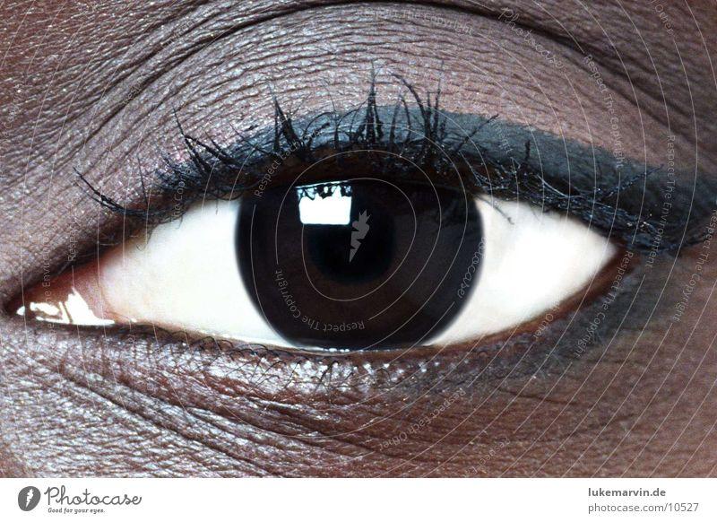 eye Frau Auge feminin Afrikaner