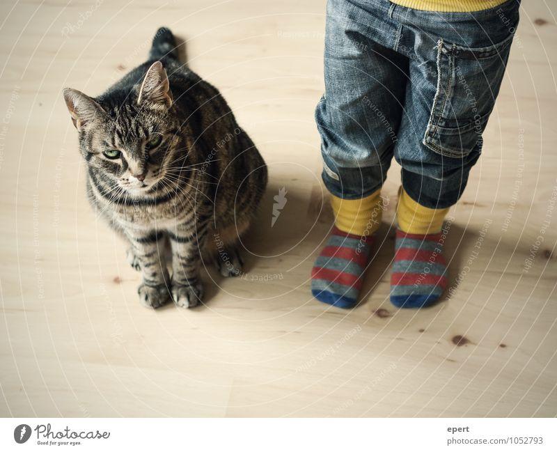 Auf Streife(n) Kind Kindheit Jeanshose Strümpfe Tier Katze beobachten warten Fröhlichkeit Vertrauen Zusammensein Neugier Erwartung unschuldig Zusammenhalt