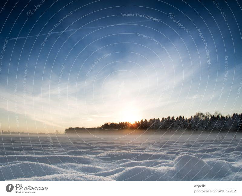 Snow and Sky Himmel Natur blau weiß Sonne Landschaft Winter Wald kalt Umwelt gelb Wiese Schnee braun Luft Eis