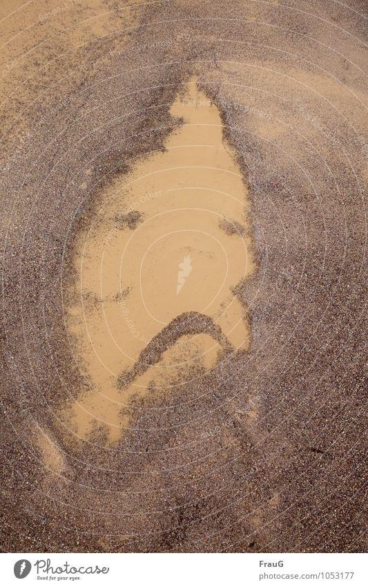 Gestatten: Pfützenmann Natur Mann Wasser Einsamkeit Erwachsene Gesicht Traurigkeit braun Sand maskulin Flüssigkeit