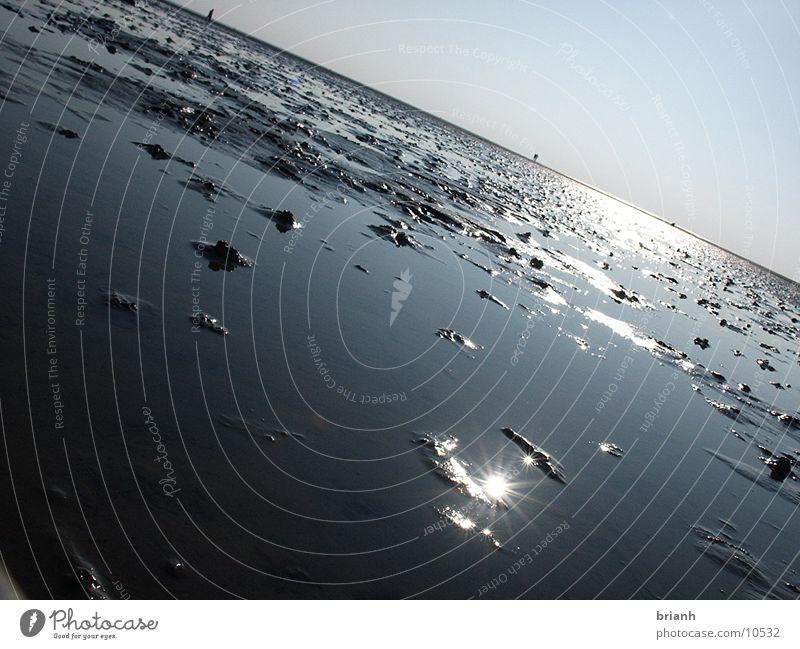 Nordseewatt 1 Wasser Wattenmeer Ebbe