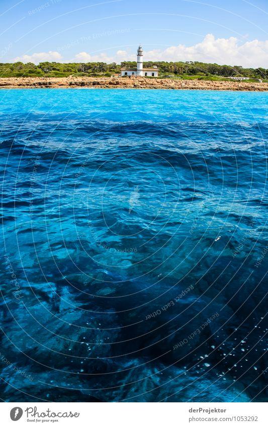 Mallorca von seiner schönen Seite 16 – mit soviel blau Natur Ferien & Urlaub & Reisen Pflanze Wasser Sommer Meer Landschaft Tier Ferne Umwelt Küste Freiheit Wellen Tourismus Verkehr Insel