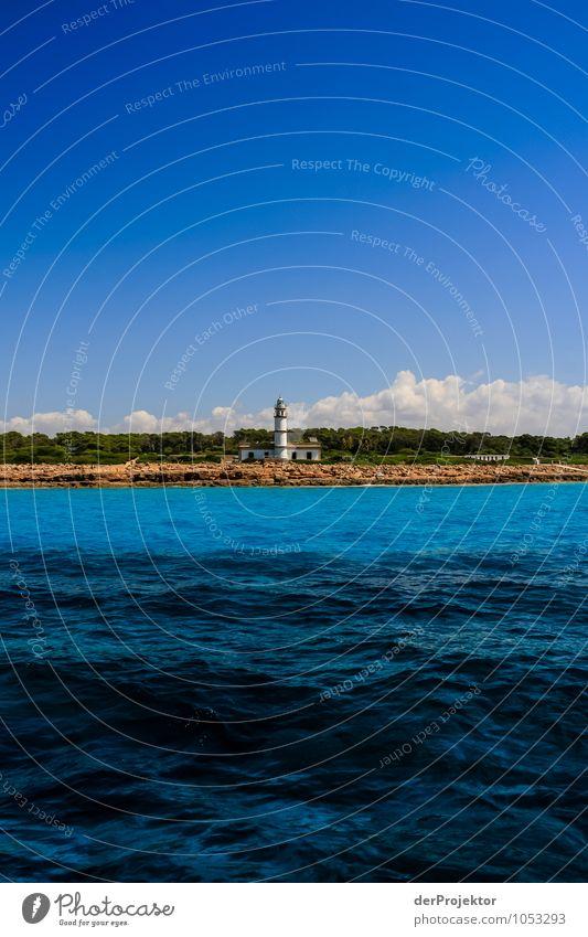 Mallorca von seiner schönen Seite 72 - Cap de Ses Salines Natur Ferien & Urlaub & Reisen Pflanze Sommer Meer Landschaft Ferne Umwelt Küste Freiheit Tourismus