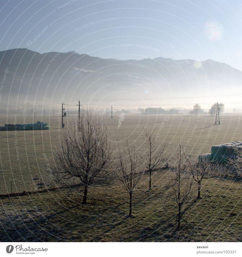 Morgenstimmung ruhig Sonne Winter Berge u. Gebirge Natur Landschaft Schönes Wetter Nebel Baum Feld kalt Einsamkeit Österreich Morgennebel Strommast Tal Frost