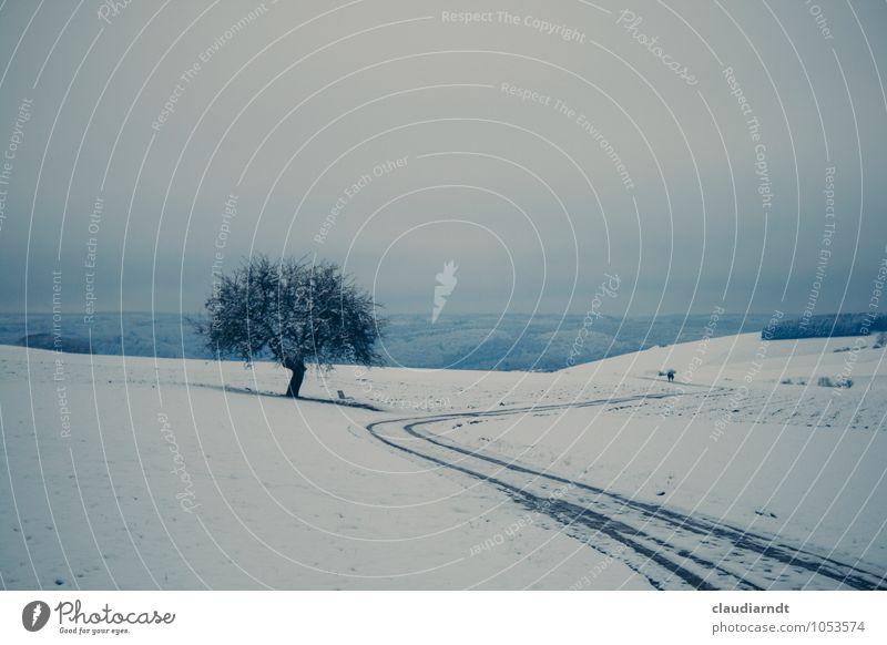 Weißes Land Natur Landschaft Pflanze Himmel Winter Eis Frost Schnee Baum Feld Wald Hügel laufen kalt blau weiß Freiheit ruhig Ferne Paar Südbaden Wege & Pfade