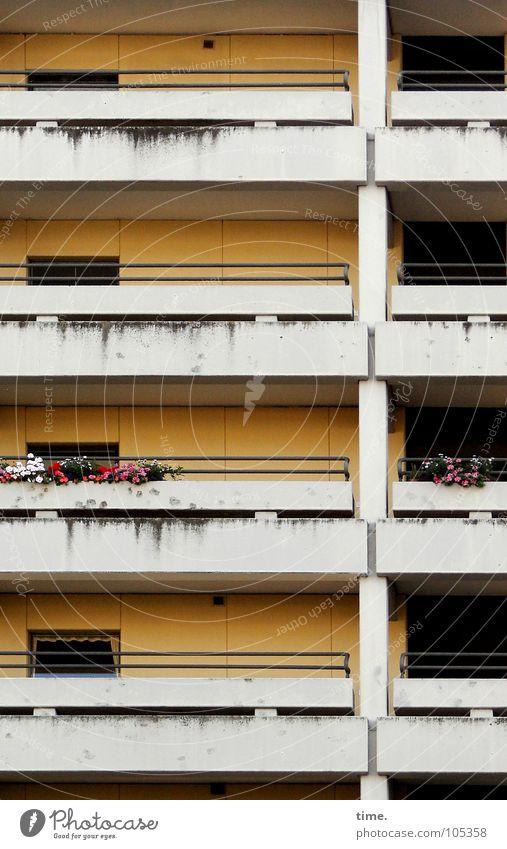 Aber der Ausblick, Madame, der Ausblick erst! weiß Farbe Haus Wand Architektur Mauer Traurigkeit Beton Hochhaus Häusliches Leben Dekoration & Verzierung trist