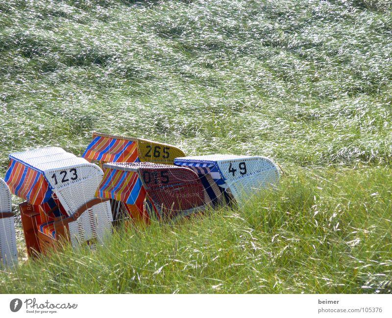 verlaufen Strandkorb Ziffern & Zahlen Gras Amrum grün Sommer Küste Stranddüne Insel Wind