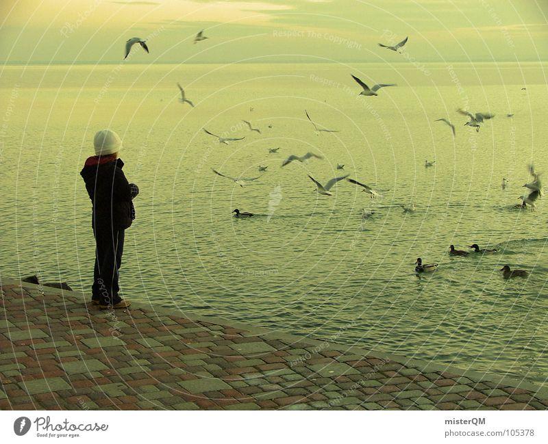 east-european girl Mädchen Meer Küste Möwe gelb füttern Futter Tier Herbst Winter weiß kalt Vogel Anorak schwarz Wellen dunkel Osten Ferien & Urlaub & Reisen