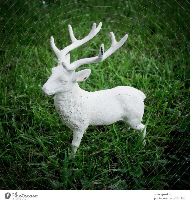 Hirsch grün weiß Freude Tier Wildtier Rasen Horn Skulptur Hirsche