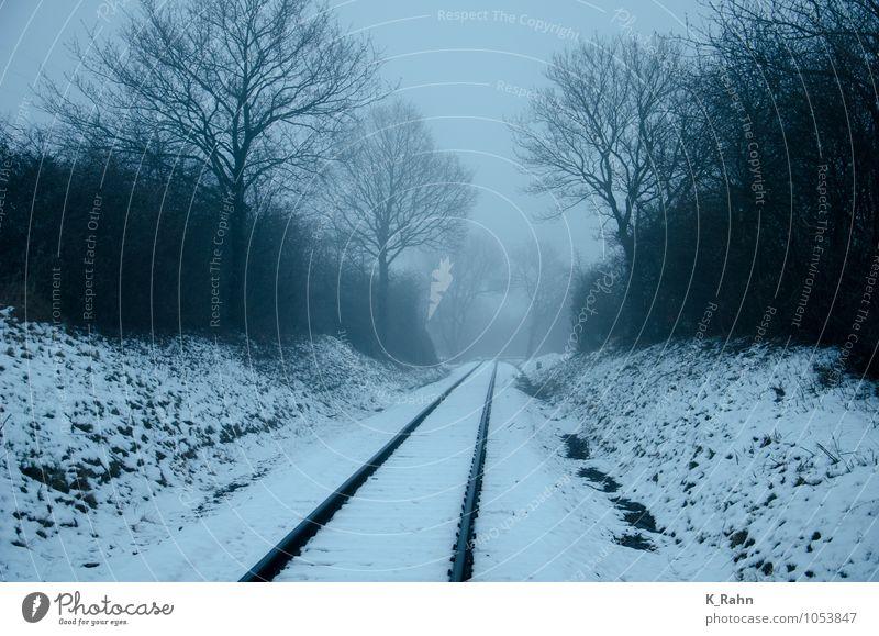 Nebel über Gleisen Ferien & Urlaub & Reisen blau Winter Ferne dunkel kalt Schnee grau Wetter Tourismus Technik & Technologie Ausflug Eisenbahn