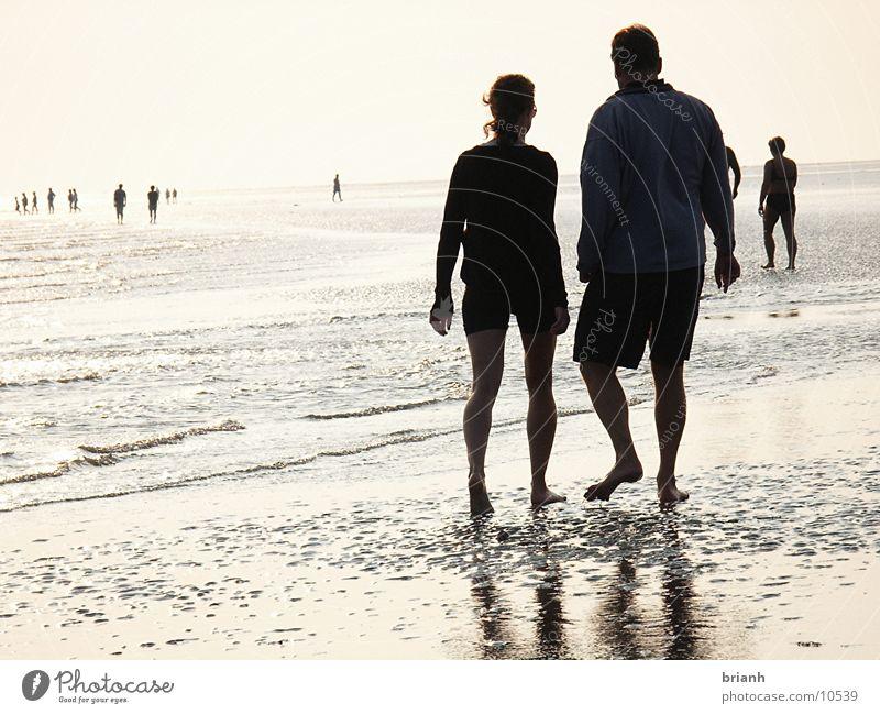 Wandern im Watt Mensch Sommer Wattenmeer Eindruck