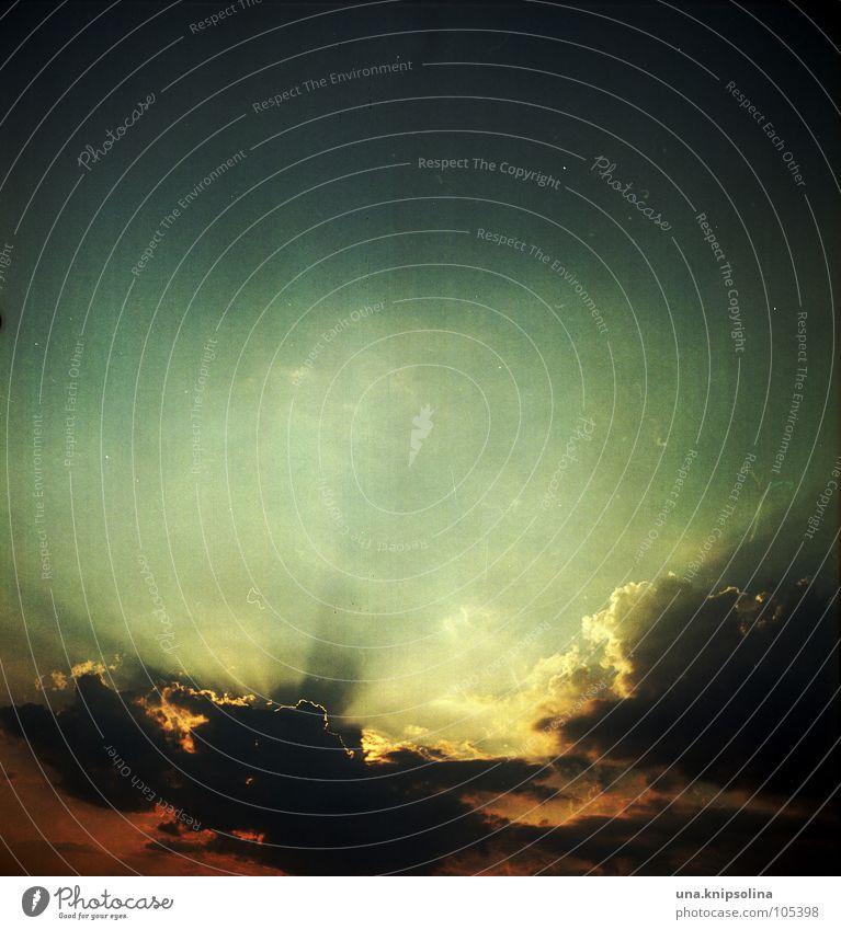 abendrot Wolken Graffiti Tod Stimmung Ende Abenddämmerung analog Möwe spät Grafik u. Illustration Himmelskörper & Weltall Mittelformat Delikt Lachmöwe Licht