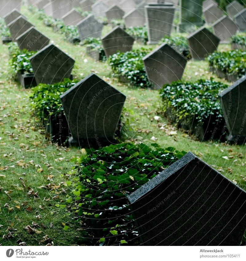 R.I.P. Tod Traurigkeit Trauer trist Frieden Denkmal Verzweiflung Krieg Russland Wahrzeichen Soldat Friedhof Grab mögen Opfer Grabstein