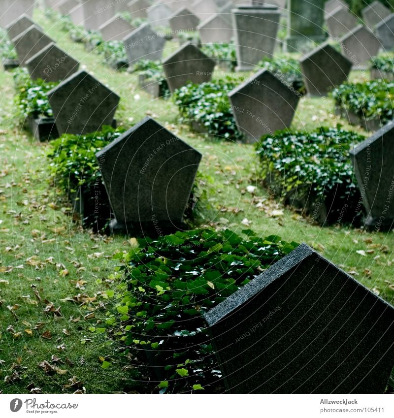 R.I.P. Tod Friedhof Grabstein Grabmal Soldatenfriedhof 2. Weltkrieg beerdigen Krieg trist Wahrzeichen Denkmal Trauer Verzweiflung Frieden armeefriedhof fünfeck