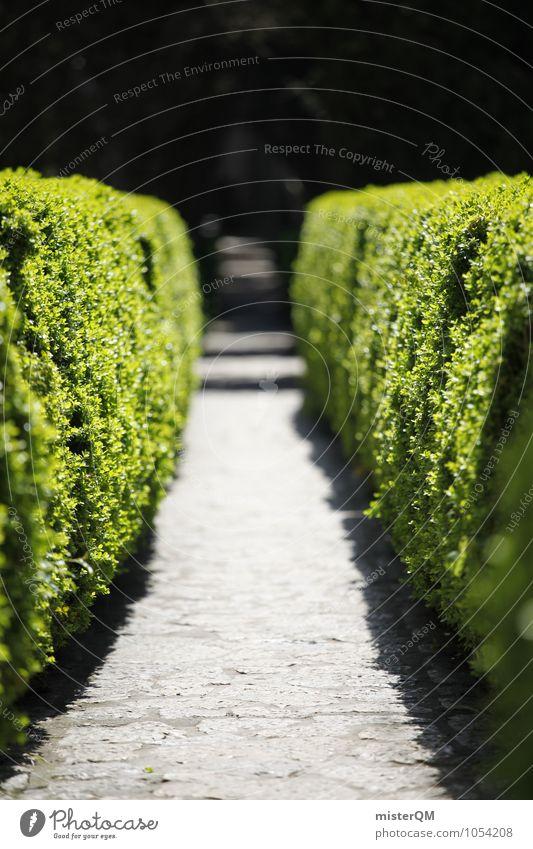 Passage II Natur grün Wege & Pfade Garten Kunst Park ästhetisch Grünpflanze Gang Hecke zugeschnitten getrimmt