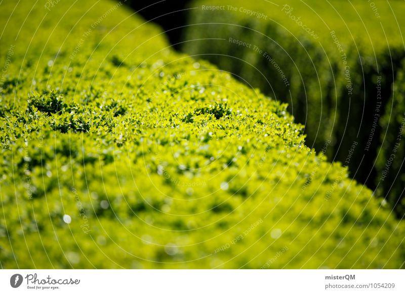 Passage III grün Wege & Pfade Kunst Park Zufriedenheit ästhetisch Grünpflanze Hecke Gartenbau Gartenfest getrimmt