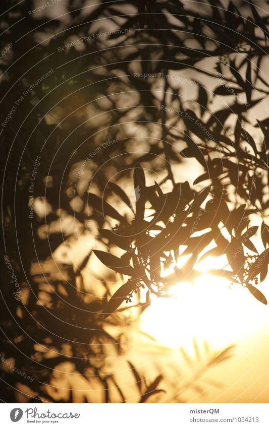 Blattgold. Kunst Natur ästhetisch verträumt Idylle friedlich Religion & Glaube Hoffnung Horizont Olivenbaum Olivenblatt Romantik Sonnenuntergang Urlaubsstimmung