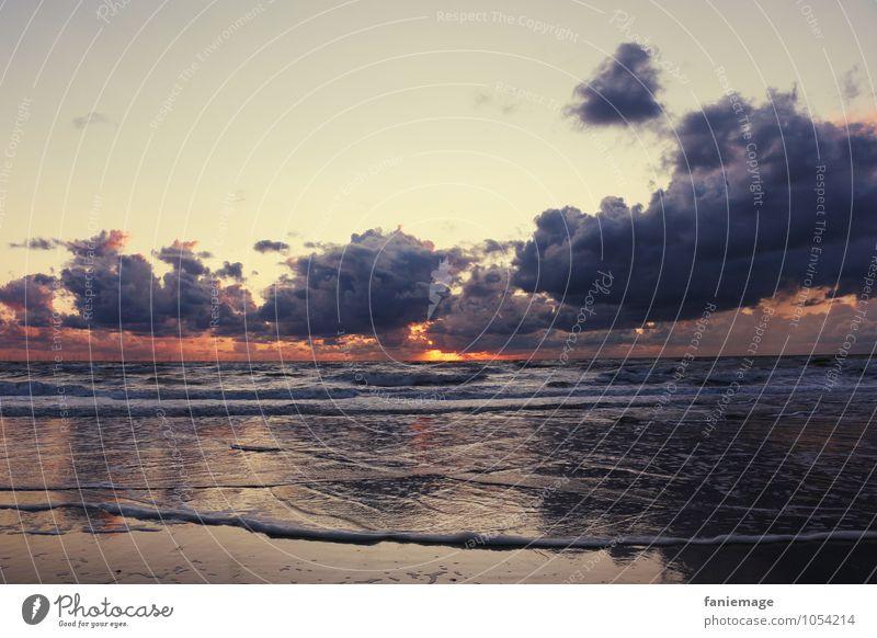 zonsondergang Natur Landschaft Urelemente Sand Wasser Himmel Wolken Nachthimmel Horizont Sonnenaufgang Sonnenuntergang Sommer Schönes Wetter Wellen Küste Ostsee