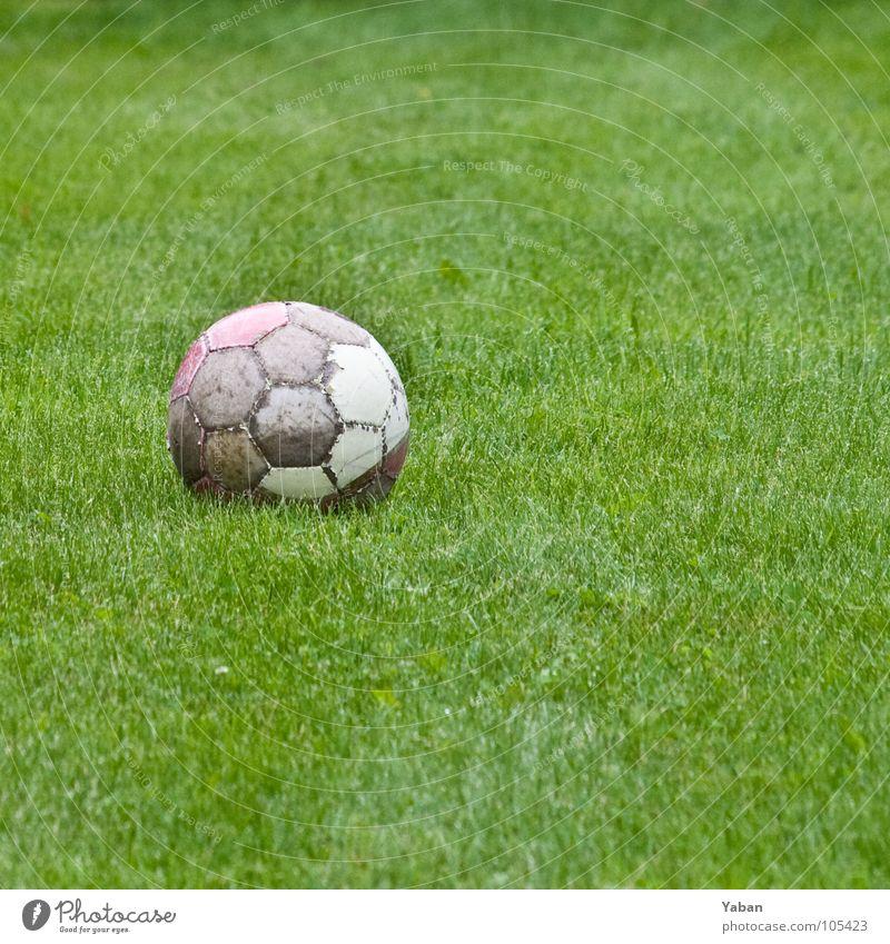 Die Angst des Torwarts ... grün Wiese Sport Gras Kindheit Fußball Rasen Ball Konzentration Kugel Leder Saison Redewendung Ballsport Kick Elfmeter