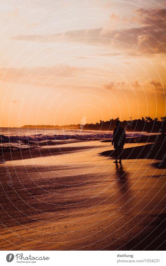 menschen am strand 2. Freude Wellness Zufriedenheit Erholung ruhig Schwimmen & Baden Freizeit & Hobby Ferien & Urlaub & Reisen Tourismus Freiheit Sommerurlaub