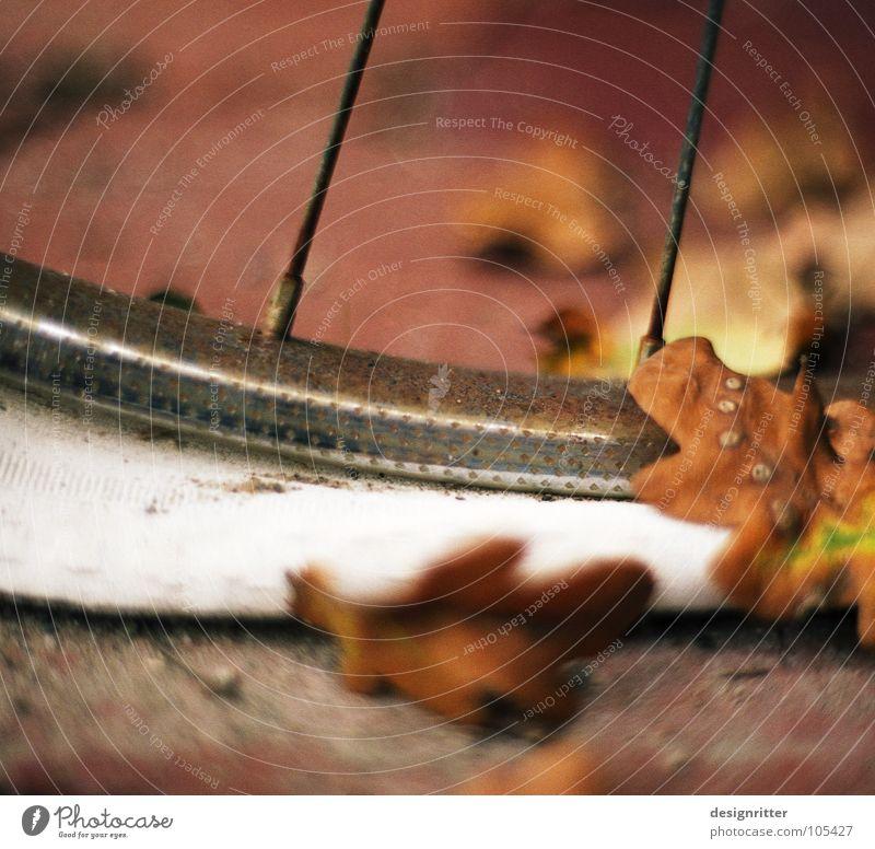 HerbstdePRESSion Blatt dunkel Herbst Traurigkeit Regen Wetter Fahrrad nass kaputt Trauer Verzweiflung Schwäche Schlauch erstaunt