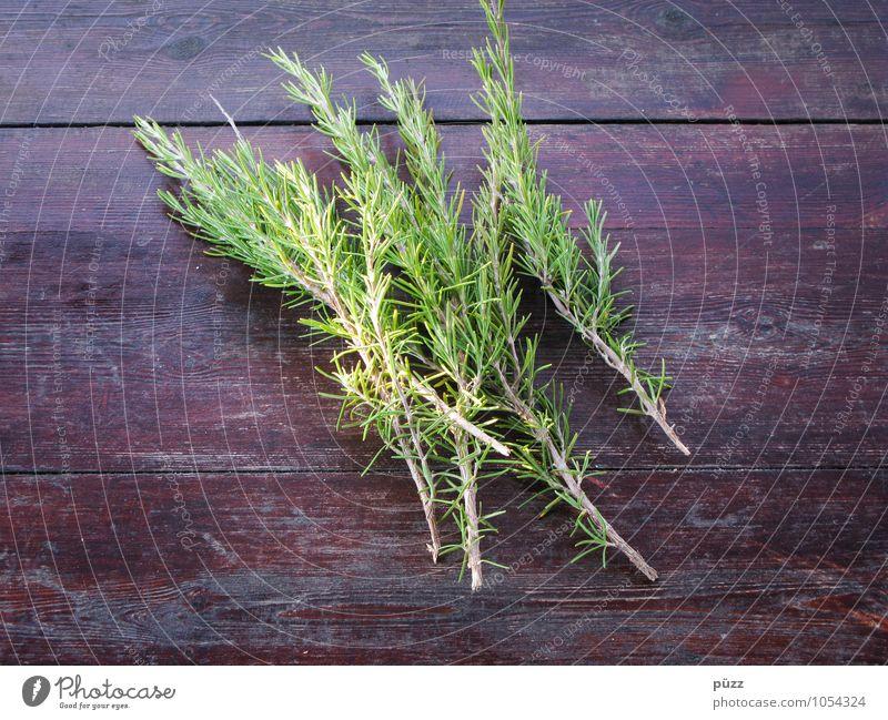 Rosmarin Natur Pflanze grün Gesunde Ernährung natürlich Essen Gesundheit braun Lebensmittel frisch genießen Tisch Kochen & Garen & Backen rein Kräuter & Gewürze