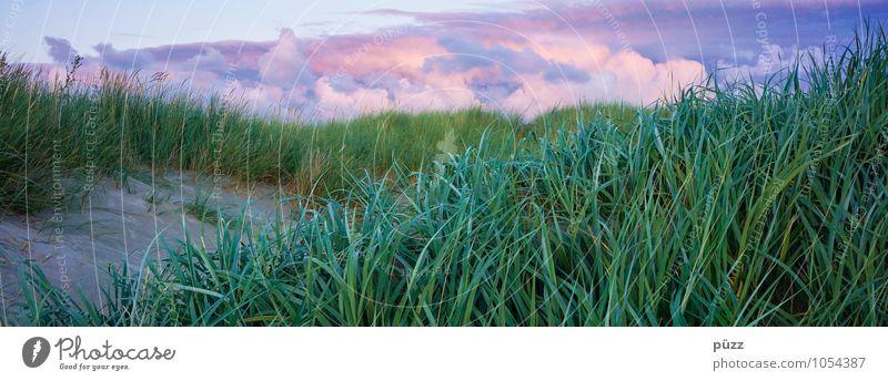 Dünenpanorama Natur Ferien & Urlaub & Reisen blau Pflanze grün Sommer Erholung Meer Landschaft Wolken Strand Ferne Küste Gras Freiheit Sand