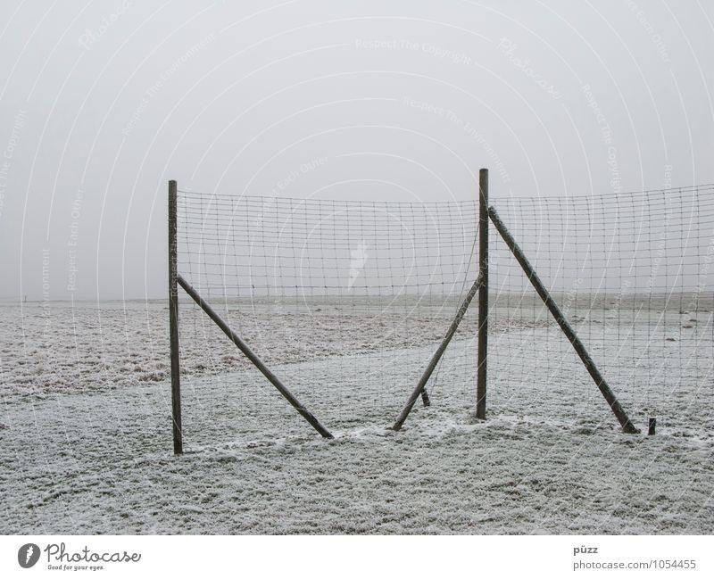 Zaun Natur Landschaft Winter schlechtes Wetter Nebel Eis Frost Schnee Wiese Feld grau weiß Zaunpfahl Barriere Maschendrahtzaun trist Ferne Horizont Linie ruhig