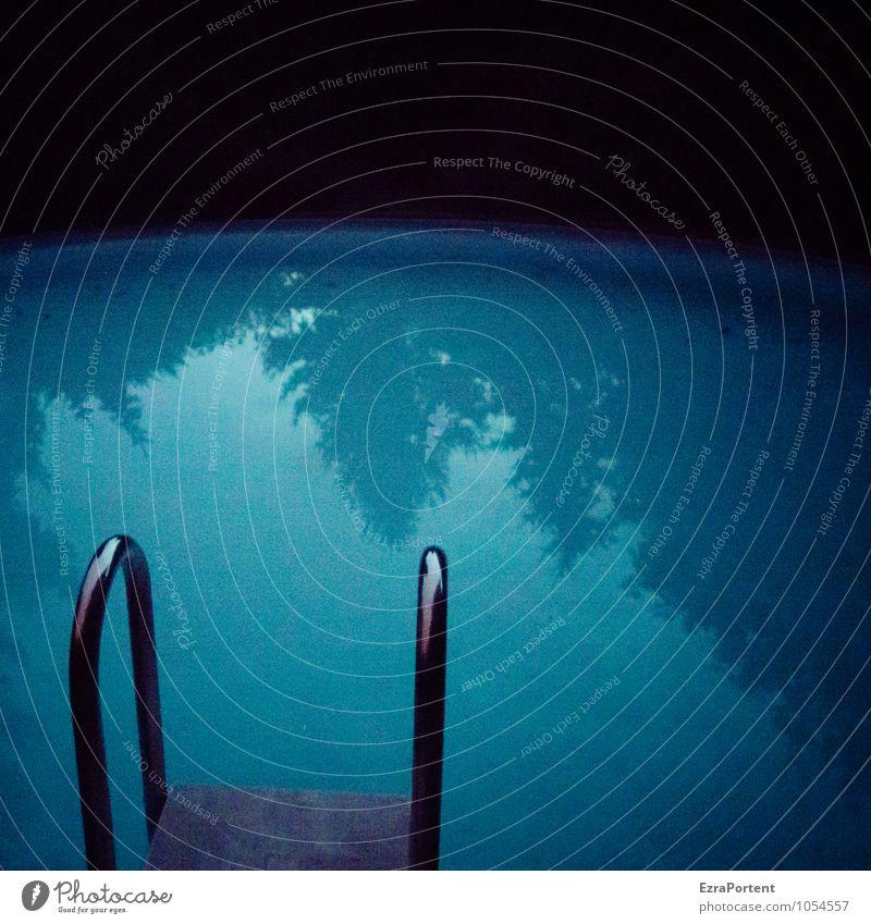 Nachtbaden Freude Wellness Leben Erholung ruhig Schwimmen & Baden Freizeit & Hobby Tourismus Pflanze Baum Linie dunkel kalt blau schwarz Leiter