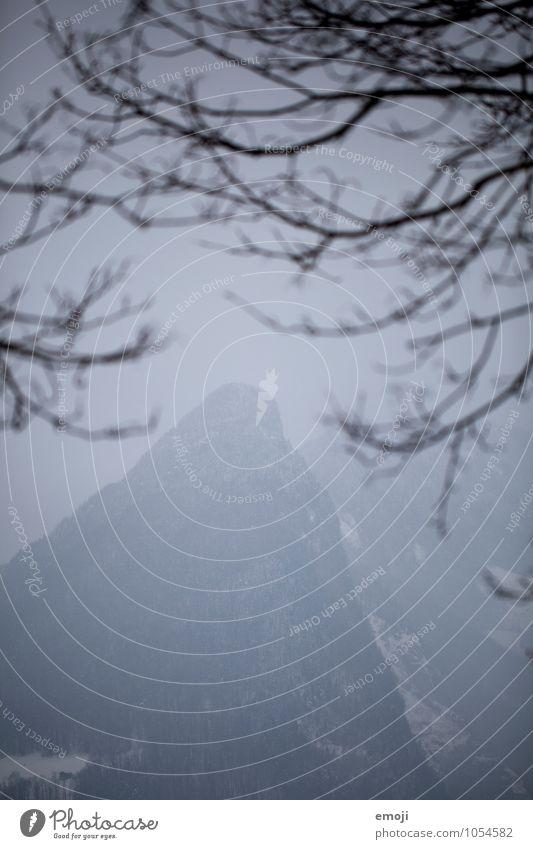 Spitze Natur blau Landschaft Winter dunkel kalt Umwelt Nebel schlechtes Wetter