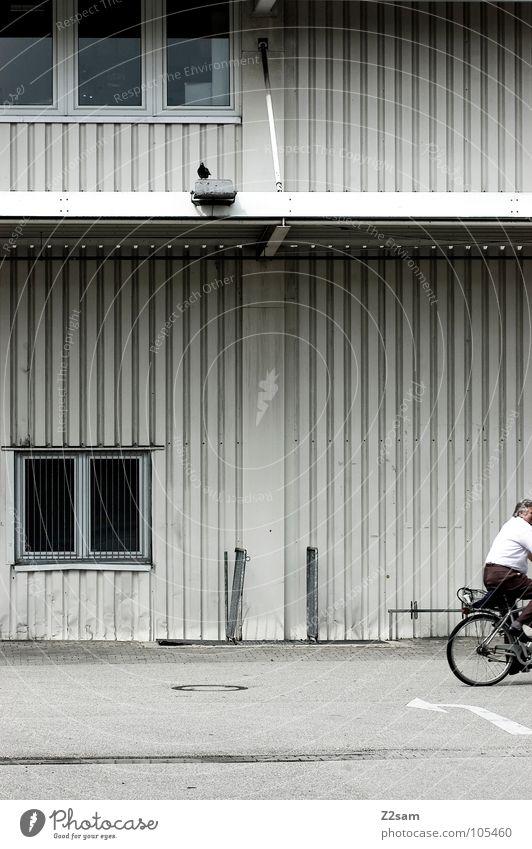 nix wie heim! Mann alt Stadt Fenster Bewegung Fahrrad maskulin Beton fahren Industriefotografie einfach Pfeil Hemd Taube Rolle
