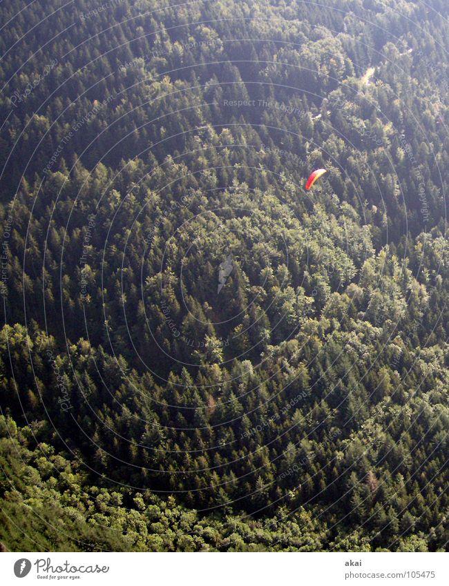 Auf der Suche Gleitschirmfliegen rot grün Farbenspiel himmelblau Romantik Sonnenlicht Abend Bronze Gefühle Schwärmerei orange Starterlaubnis Südbaden