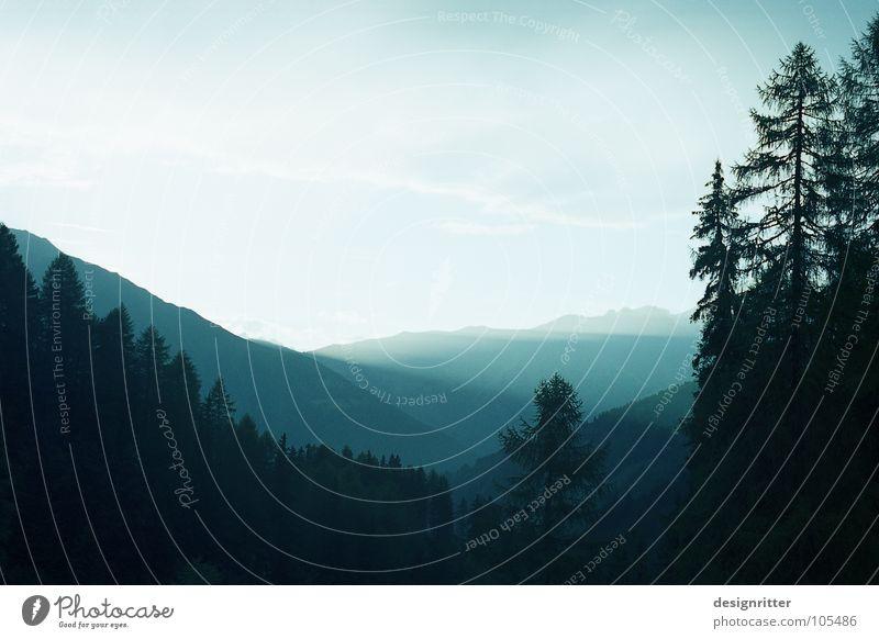 Streiflicht Himmel Baum Sonne blau Wald Berge u. Gebirge hell Frieden Alpen sanft Österreich Tal friedlich