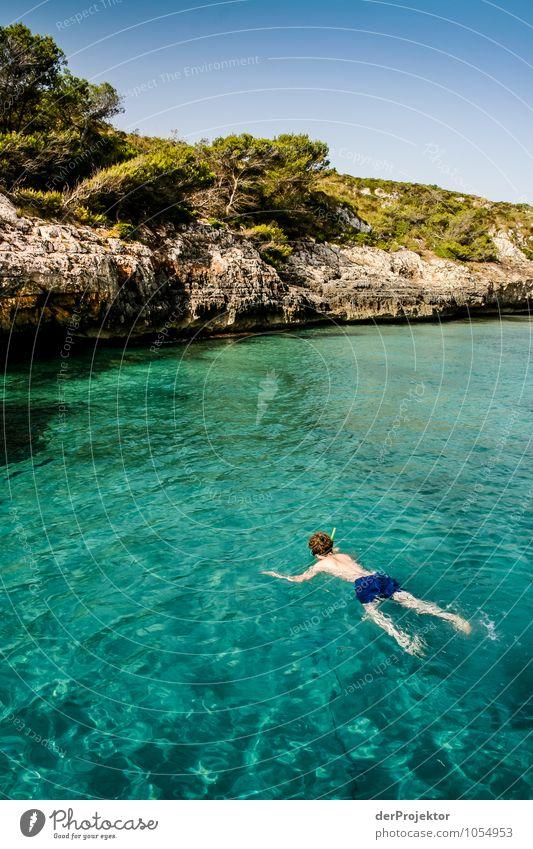 Mallorca von seiner schönen Seite 29 – mit Schnorchel Natur Ferien & Urlaub & Reisen Pflanze Baum Meer Landschaft Tier Strand Umwelt Gefühle Küste
