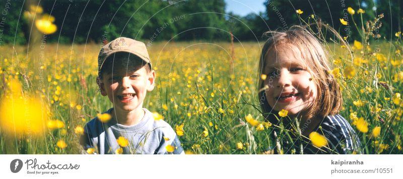 wiesenkinder Kind Mädchen Sonne Blume grün Sommer Freude Junge Wiese lachen groß Panorama (Bildformat) Querformat