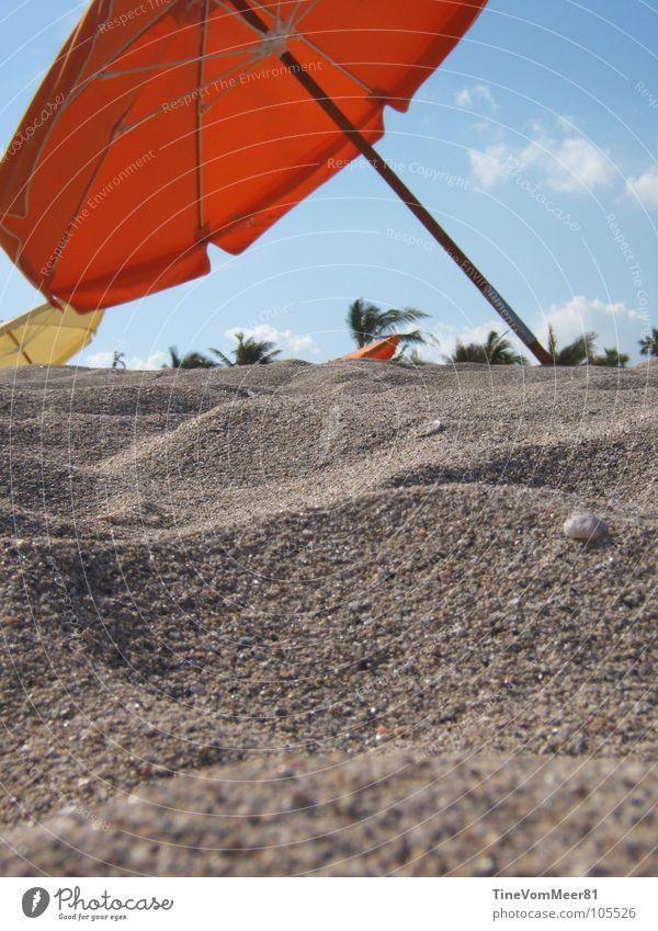 Miami Dreams rot Sommer Strand Ferien & Urlaub & Reisen Erholung Sand Küste frei USA Sonnenschirm Florida Miami