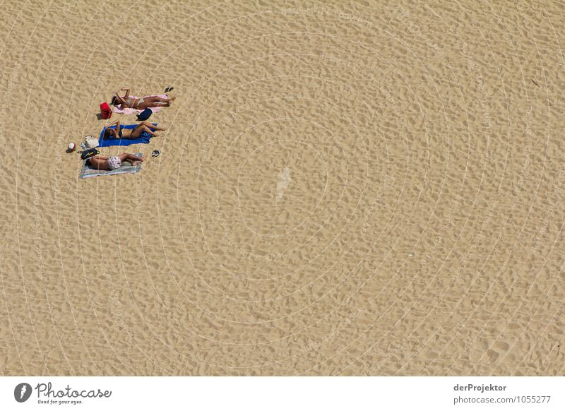 Da ist noch Platz Natur Ferien & Urlaub & Reisen Pflanze Sommer Sonne Landschaft Freude Strand Umwelt Küste Glück Freiheit Sand Zufriedenheit Tourismus Wellen