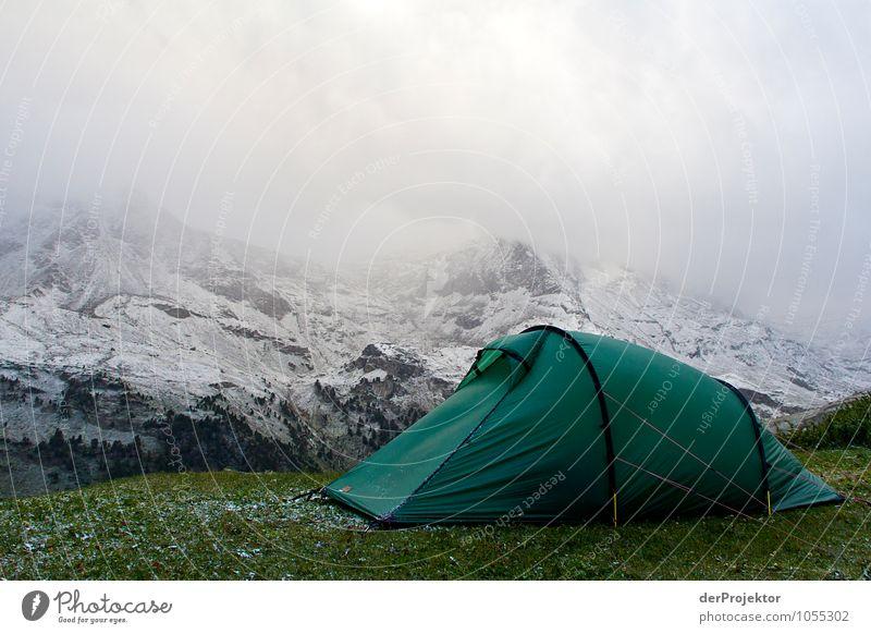 Grün gegen Weiß Natur Ferien & Urlaub & Reisen Pflanze Sommer Landschaft Ferne Umwelt Berge u. Gebirge Gefühle Schnee Freiheit Felsen Eis Kraft Tourismus wandern
