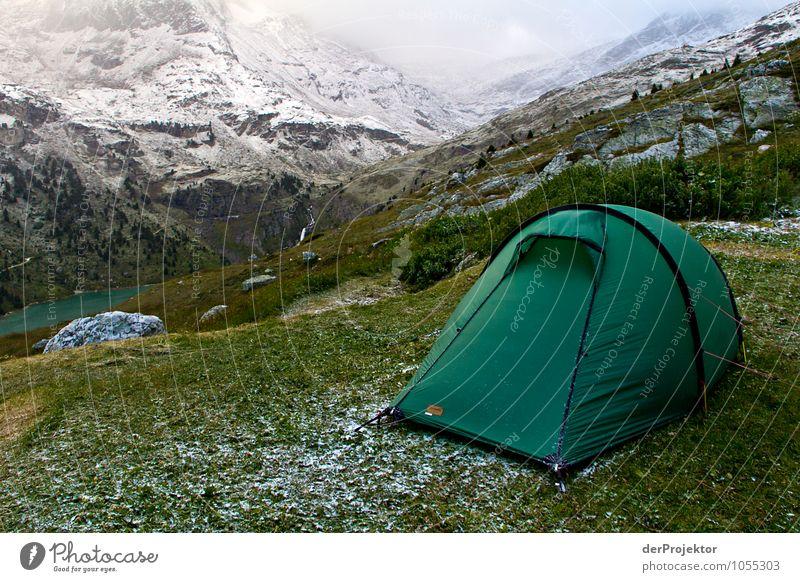 Im Sommer zelten ist auch nicht mehr sicher Natur Ferien & Urlaub & Reisen Pflanze Sommer Landschaft Tier Ferne Umwelt Berge u. Gebirge Wiese Schnee Freiheit Felsen Eis Freizeit & Hobby Tourismus