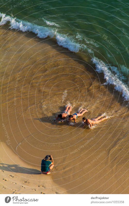 Bitte einmal stillhalten Mensch Natur Ferien & Urlaub & Reisen Jugendliche Pflanze Sommer Sonne Meer Landschaft Freude Tier 18-30 Jahre Strand Umwelt Erwachsene