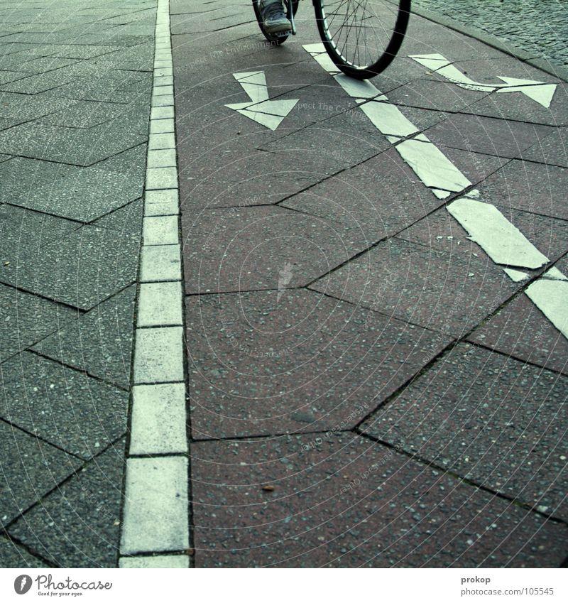 Entscheidung ohne Generalprobe Straße Bewegung Wege & Pfade Fahrrad Verkehr Zeichen Konzentration Fragen Fahrradfahren links rechts Gabel skeptisch Entschlossenheit unsicher Straßennamenschild