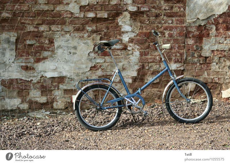 Dauer(b)renner Sport Fitness Sport-Training Fahrradfahren Technik & Technologie Fortschritt Zukunft Bauwerk Mauer Wand Fassade Verkehr Verkehrsmittel alt