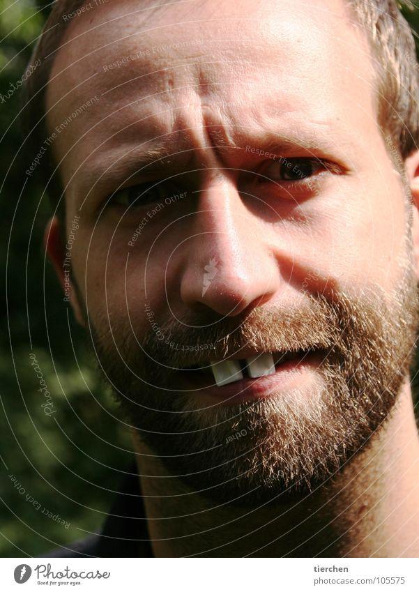 """""""graf zahn"""" Bart Macht Süßwaren Zahnarzt Wahnsinn Hase & Kaninchen Biber Nasenbär Mann Porträt verrückt skurril Freude Falte Schatten gigantisch"""