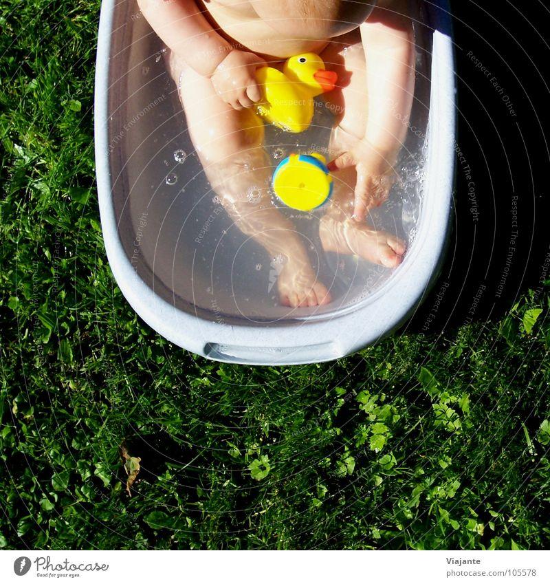 Badetag 1 Kind Wasser grün Mädchen Sommer Freude Wiese Wärme Gras Garten Baby Schwimmen & Baden süß Wellness Rasen