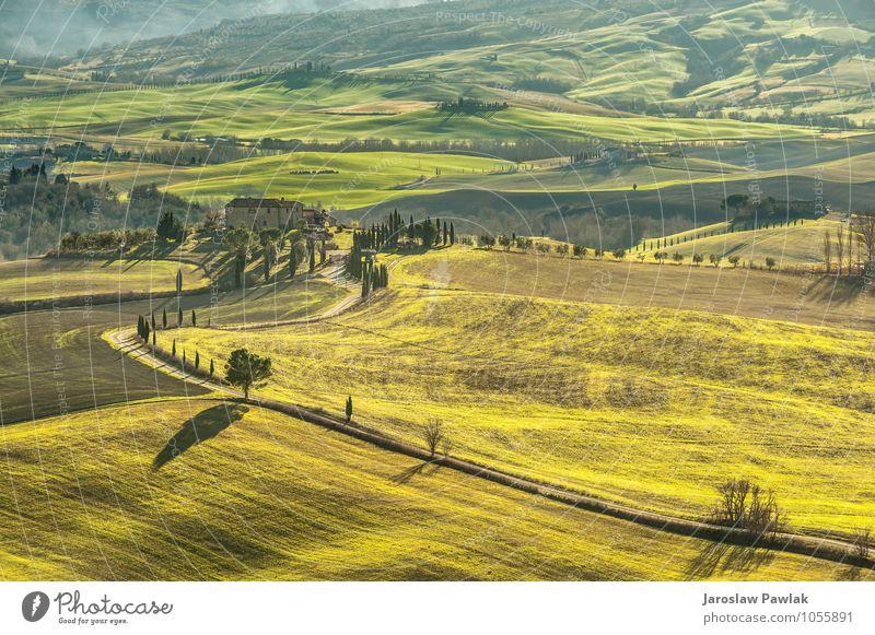 Grüne Frühlingslandschaft von Toskana, Italien. schön Ferien & Urlaub & Reisen Sommer Haus Natur Landschaft Himmel Wolken Horizont Baum Gras Wiese Hügel Straße
